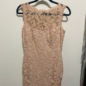 Nude Lace Sheath Dress